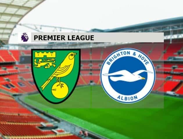 Soi kèo nhà cái Norwich City vs Brighton & Hove Albion, 04/7/2020 - Ngoại Hạng Anh